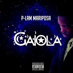 P-Lam Mariposa - Gaiola