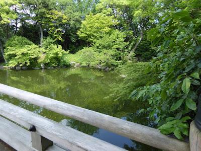 京都御苑 九條池 高倉橋