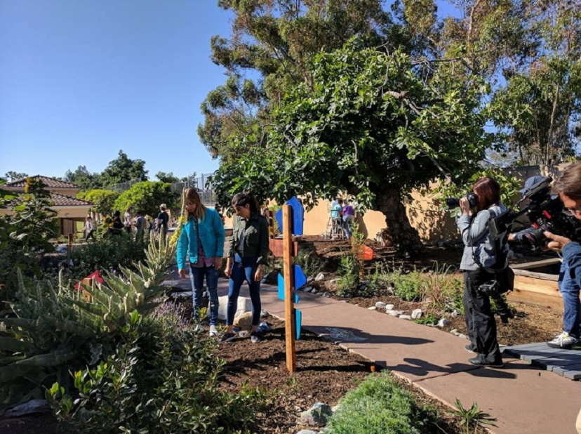 To Further Celebrate Earth Day, Game Shakers Stars Cree Cicchino, Madisyn  Shipman, Benjamin Flores Jr. And Thomas Kuc Visited Pacific Marine Mammal  Center ...