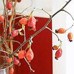 http://vontagzutag-mariesblog.blogspot.co.at/2017/10/herbstdeko-in-der-vase.html