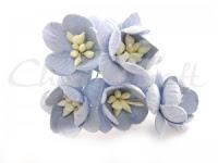 https://cherrycraft.pl/pl/p/Kwiat-wisni-NIEBIESKIE-5-szt.-Wild-Orchid-Crafts-/2634