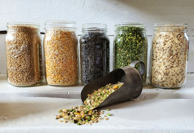 row of glass jars filled with seeds and grains