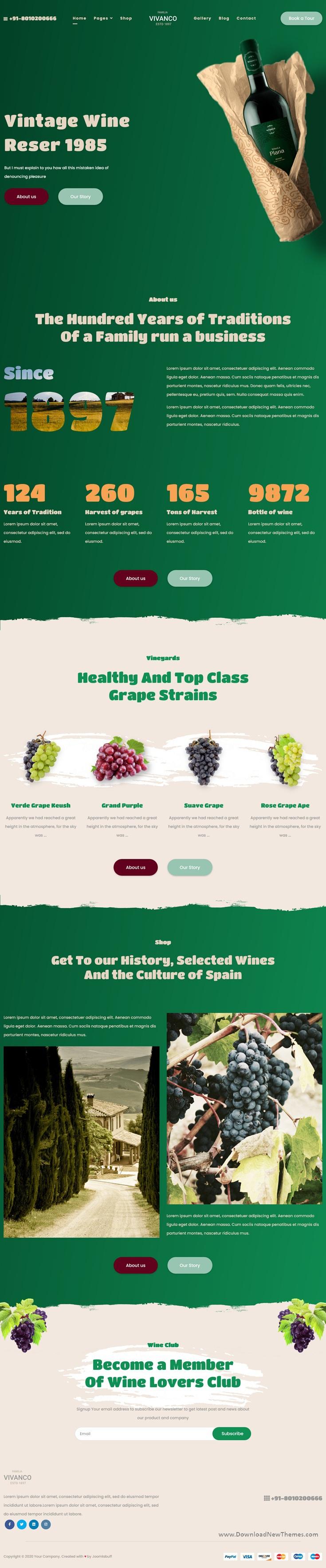 Vineyard & Winery Shop Joomla Template