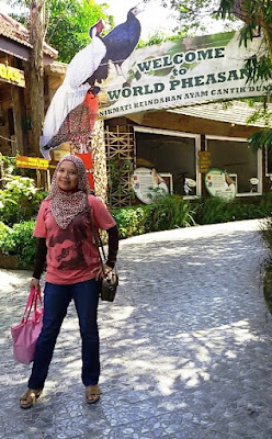 cara pesan tiket pesawat murah di pegipgi wisata indonesia keluarga ke batu secret zoo dan eco green park jatim malang nurul sufitri mom lifestyle blogger