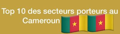 Top 10 des secteurs porteurs au Cameroun