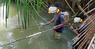 nyetrum ikan