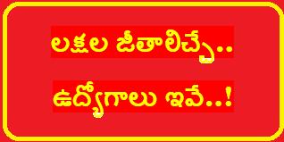 లక్షల జీతాలిచ్చే.. ఉద్యోగాలు ఇవే..!/2020/02/Jobs-which-offer-salary-more-than-lakh-get-information.html