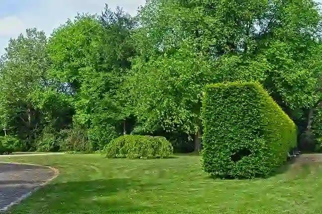 حديقة السلام بالرياض