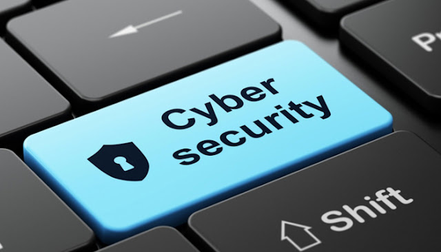 Pak Cyber Security and Cyber Crime