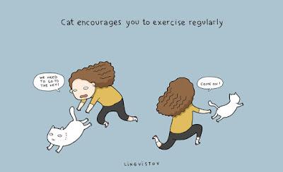 Sporcu-Kedi