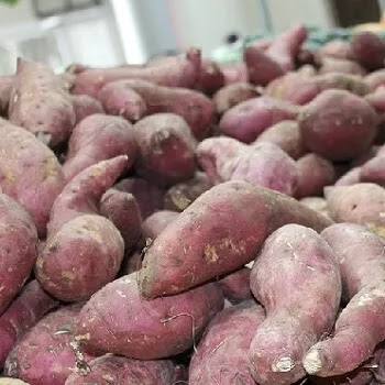 रताळे, sweet potato vegetables name in Marathi