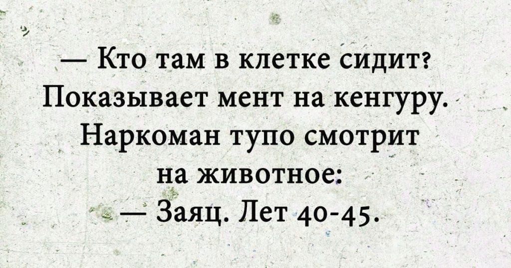 ТОП-15 Смешных Фраз В Картинках