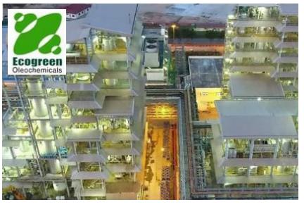 Lowongan Kerja SMK SMA PT Ecogreen Oleochemicals Juni 2020