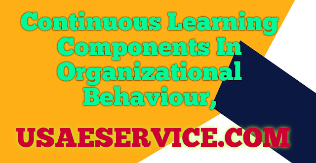 Continuous Learning In Organizational Behaviour