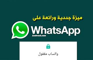 apk whatsapp beta