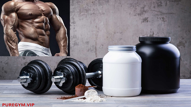4 Pillars of Supplements For Bodybuilders And Athletes