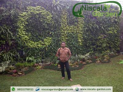 Tukang Taman Vertikal Jember