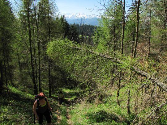 Ostre podejście po stoku góry Żar
