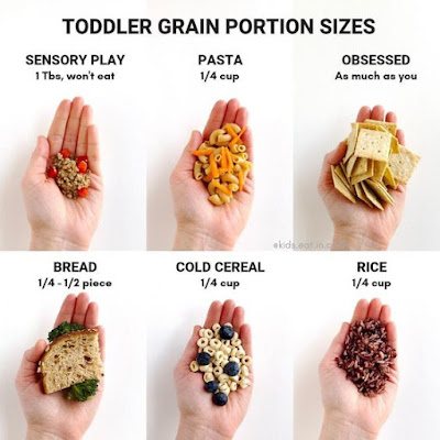 toddler portion sizes;Toddler Grain Portion Sizes; toddler portion plates; portion sizes for babies; grains for toddlers; food size for 12 month old; portion sizes for toddlers 1-3 years; food pyramid 1 year old;