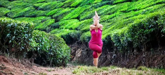 green tea weight loss best diet for weight loss arm fat