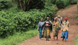 Perubahan sosial masyarakat sekitar hutan merupakan suatu proses yang mencangkup masyarakat tradisional menjadi masyarakat modern akibat pengetahuan.