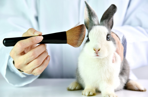 Why you should switch over to cruelty-free cosmetics