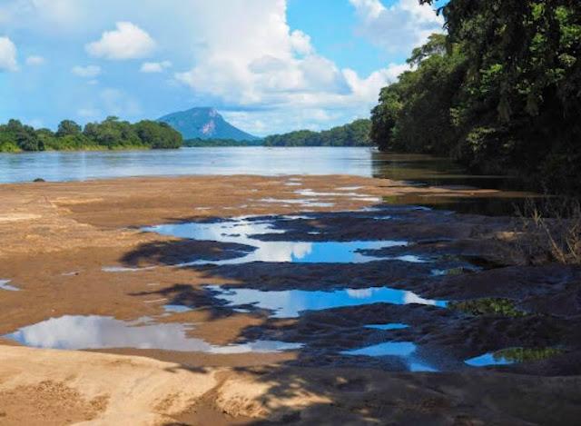 සංචාරකයින් විවෘත නැති - ජල ගැලුම් නිම්න ජාතික වනෝද්යානය🍃🐃🦌🐘 (Flood Plains National Park) - Your Choice Way