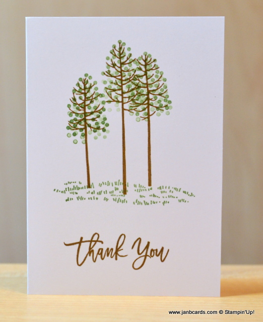 July Thank You Cards Janb Cards
