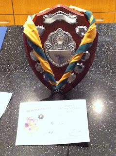 scouts district swimming gala prize plaque