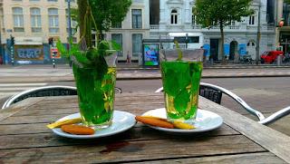 Zielona mięta- herbata
