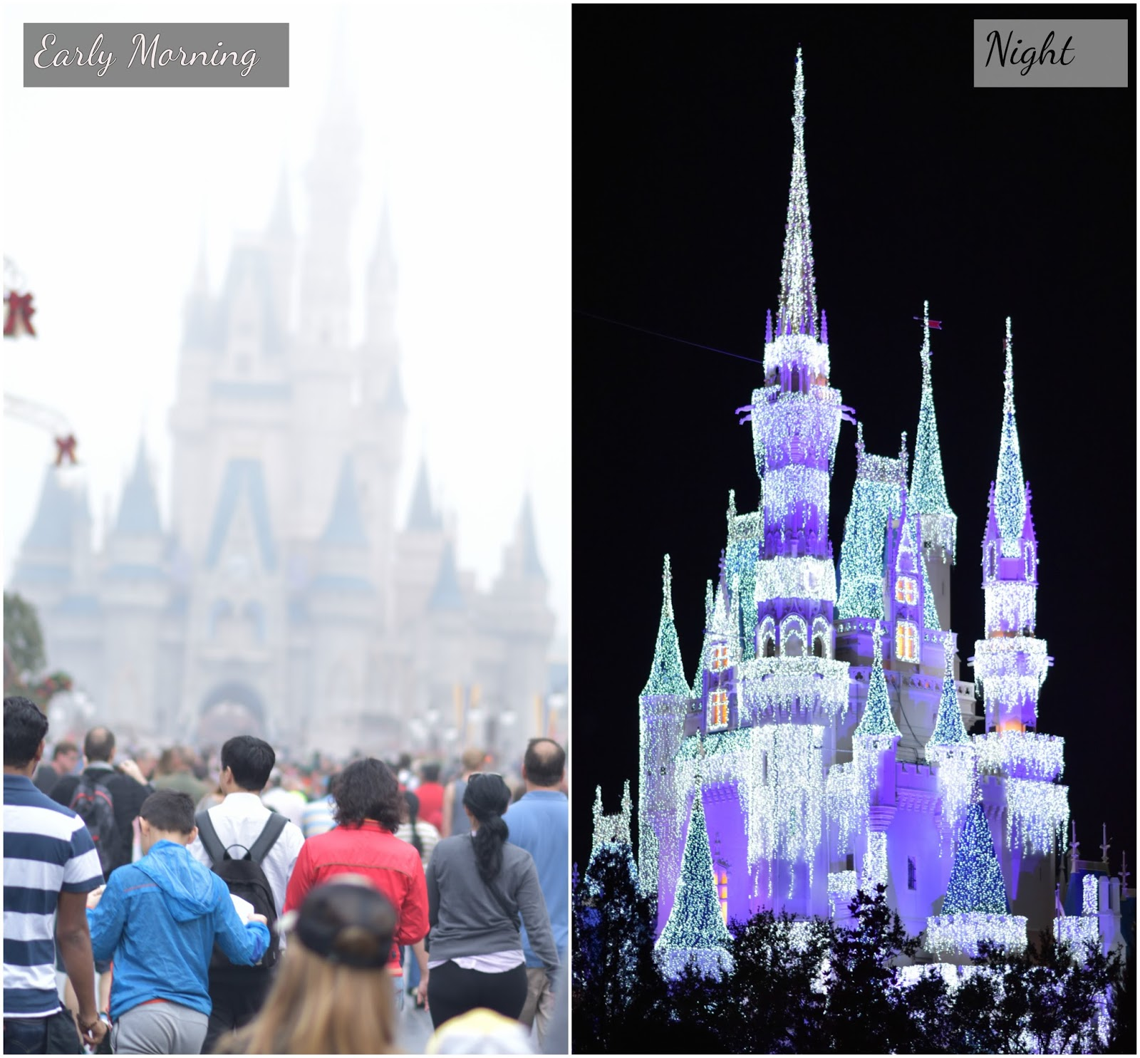 Aim for Glam_ Disney World_Prasanthi_Kadiyala