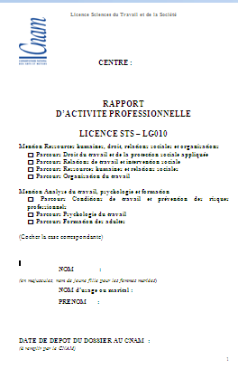Rapport D Activite Professionnelle