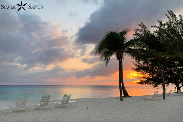 Silver Sands Condos Views for Quarantine and Freedom Front Row Seats to Our Gorgeous Beach.