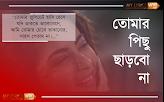 omar Pichu Charbo Na  (তোমার পিছু ছাড়বো না) Lyrics
