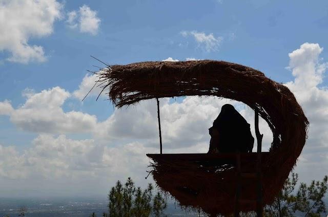 Hutan Pinus, Wisata Menawan di Yogyakarta