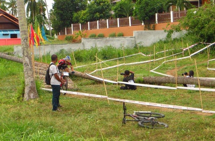 бамбуковый мост для велосипеда
