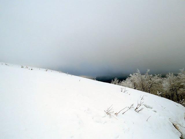 Połonina Wetlińska - droga do Chatki Puchatka