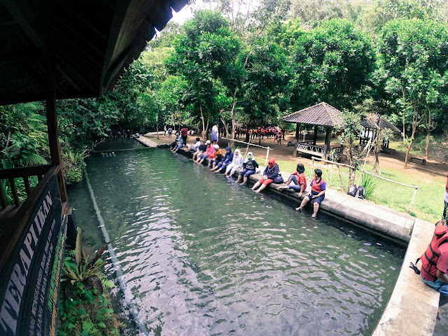 terapi ikan di Citumang Green Valley