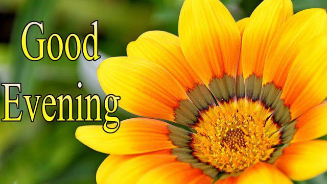Latest good evening images with flowers