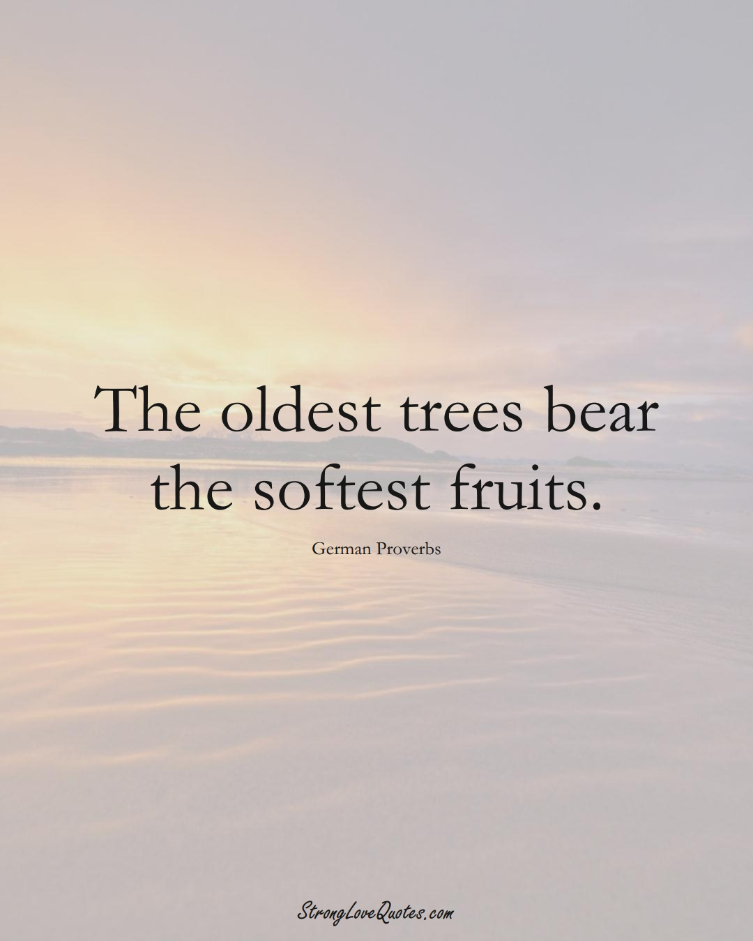 The oldest trees bear the softest fruits. (German Sayings);  #EuropeanSayings