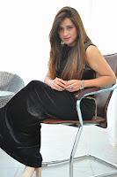 Actress Farah Khan Glam Photo Shoot