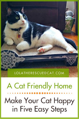 Cat Friendly Home Pinterest Graphic