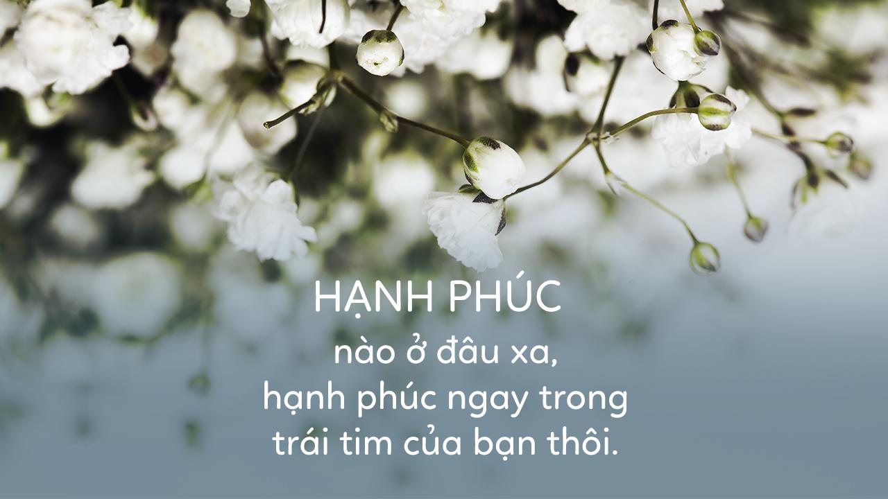 60-stt-hanh-phuc