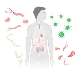 المناعة المكتسبة فى جسم الانسان من الامراض