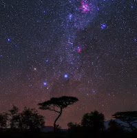 The Southern Cross, Milky Way and Carina Nebula seen over Amboseli National Park