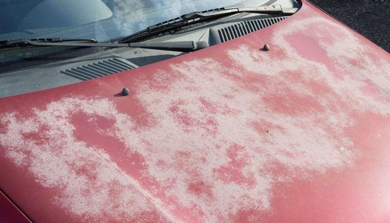 حماية طلاء السيارة من حرارة الشمس في الصيف