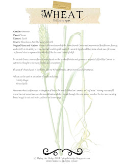 Magical and Medicinal Uses of Wheat. Includes FREE BOS page!