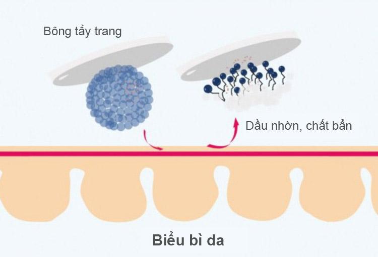Sử dụng micellar water với bông tẩy trang sẽ đem lại hiệu quả tốt nhất