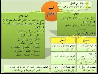 اسم الفاعل واسم المفعول للمستويات الرابع والخامس والسادس