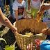 Πρόταση επίσκεψης στο Αγρόκτημα Bιωματικής Εκπαίδευσης και Τεχνών «Χώρα»